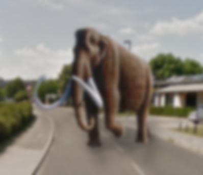 Dolgodlaki mamut